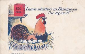Chicken ; I have started in Business for Myself , 00-10s