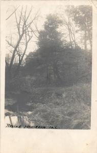 F22/ Waukegan Illinois RPPC Postcard c1910 Ravine View Park