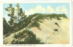 USA, The Crest Path, Dunes State Park, Tremont, Indiana, 1910s-20s unused
