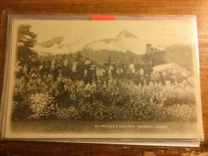 Alaska AK Real Photo RPPC Postcard c1930 SKAGWAY Blanchard Garden Flowers Mts