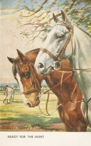Whydale. Horses. Ready for the Hunt Nice vintageEnglish Postcard