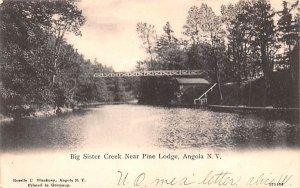 Big Sister Creek Angola, New York Postcard