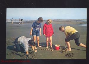 RAZOR CLAM DIGGERS WASHINGTON BEACH DIGGING VINTAGE POSTCARD