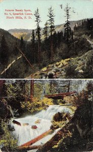 Natures Beauty Spots Spearfish Canyon Black Hills SD