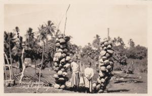 RP Two Children & coconuts, Nukualofa-Tonga, 1910s