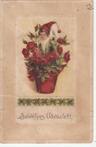 Hungary 1930 greetings postcard dwarf boy flowers pot fantasy