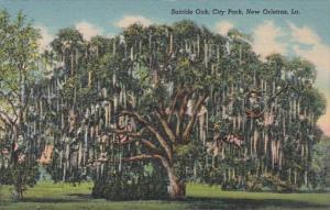 Louisiana New Orleans City Park Suicide Oak Curteich