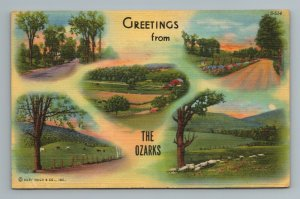 Greetings from The Ozarks MO Missouri Postcard