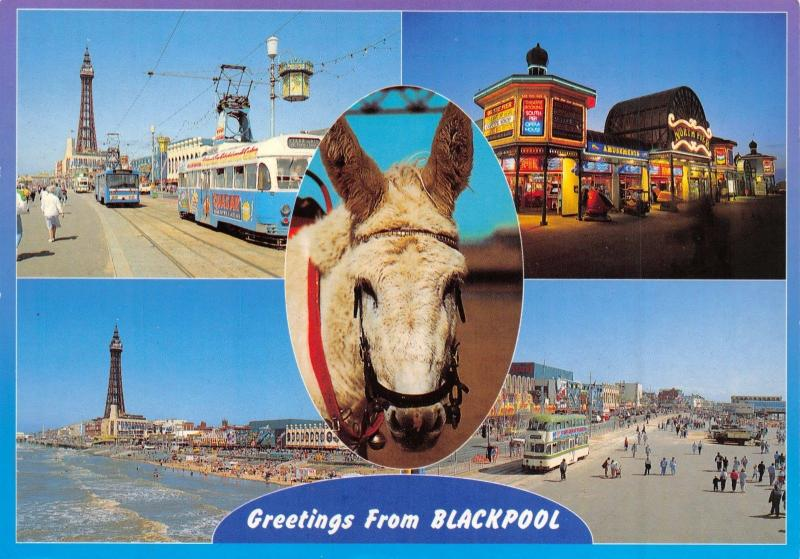 Blackpool Postcard, Greetings from Blackpool by E T W Dennis