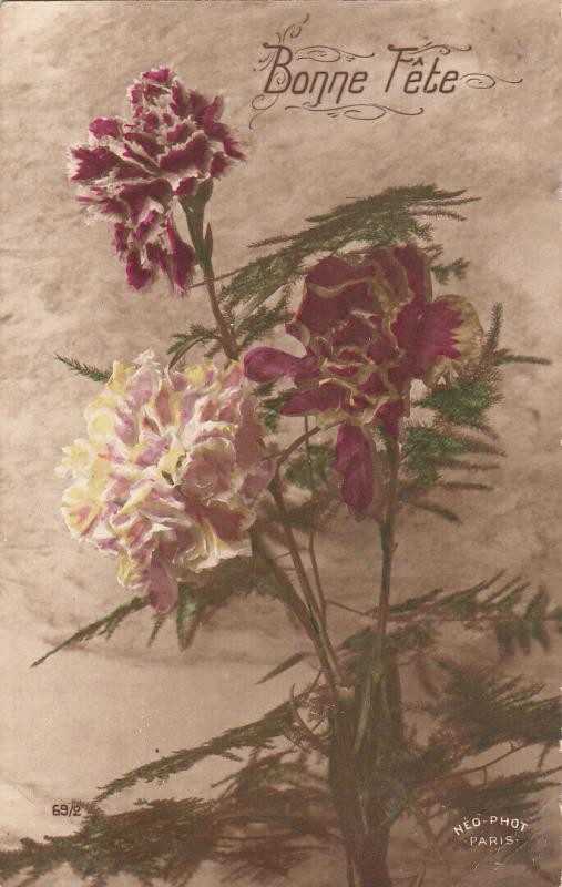 Early greetings postcard tinted flowers carnation