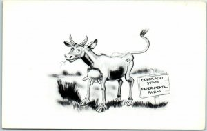 Colorado Comic Postcard Cow w/ Teats in Front Experimental Farm Lazy-Curios