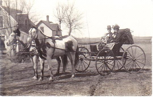 Real Photo Family in Buggy 1908  Harcourt Iowa