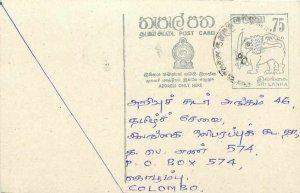 Entier Postal Stationery Postal Sri Lanka Ceylon Lion