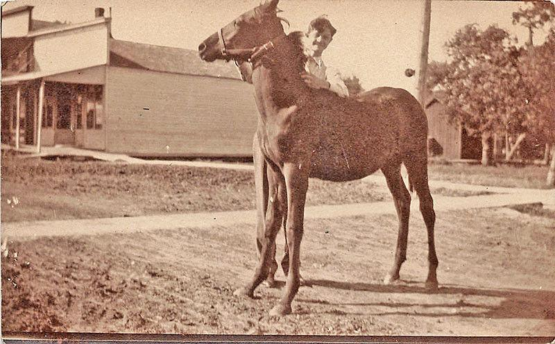 Wilber NE Man with His Horse Dirt Street View Real Photo Postcard