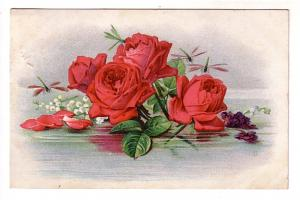 Lovely Red Roses Floating in Water, Embossed, Freeners Corner Nova Scotia, Sp...