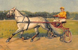 Trotter Horse Racing Unused