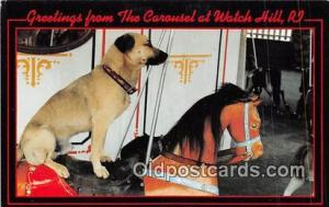 Iggy Rides the Watch Hill, Rhode Island Carousel Watch Hill, RI, USA Postcard...