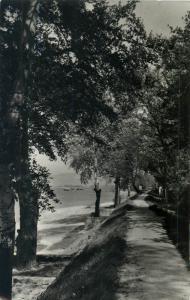 Hungary 1962 Felogod Danube river banks RPPC