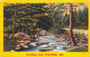 Windsor Missouri~Colorful Flowers & Road Along Stream in Forest Area~1954 PC