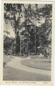 Rio De Janeiro - The Botanical Gardens, Brazil,  White Border