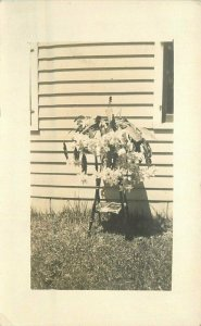 C-1910 Floral Arrangement Pot Stand Magazines RPPC Photo Postcard 20-11751