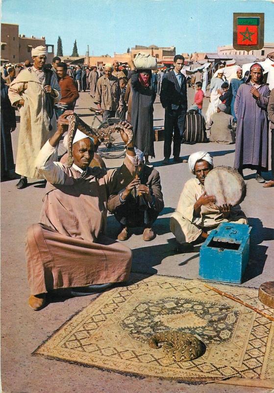 Snake enchanter Morocco