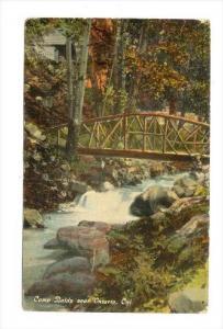 Camp Baldy, wooden bridge, Ontario , California , PU-1919 ; Yosemite