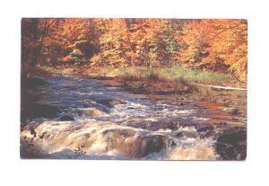 Lovely River, Rushing Water, Morehead City, North Carolina, Nyce Manufacturing