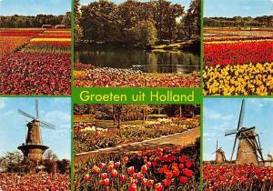 Netherlands Groeten uit Holland, tulips, windmill, multiviews