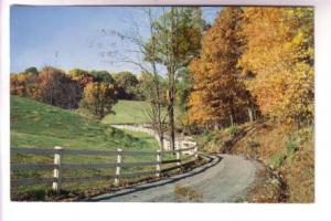 White Fence, Country Road, Colour Photo, Published in Boston