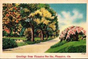 Alabama Flumaton Greetings From Flumaton Bus Station 1951