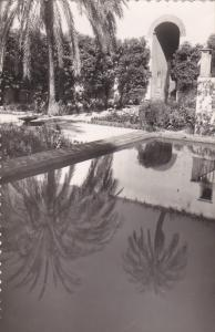 RP; SEVILLA, Andalucia, Spain; Royal Palaces, gardens, Pond,  00-10s