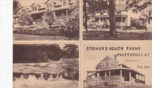 New York Prattsville Steiners Health Farms