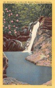 NC, North Carolina  MITCHELL FALLS~Water Falls   Yancey County  c1940's Postcard