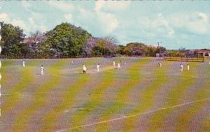 Barbados Sports Cricket On The Village Green