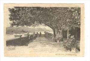 Alter Zoll, Siebengebirge, Bonn (North Rhine-Wesphalia), Germany, 1900-1910s