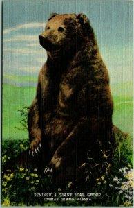 1940s DENVER MUSEUM OF NATURAL HISTORY Postcard Giant Bear Group Diorama Linen