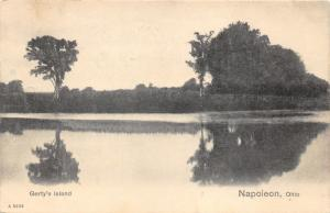 Napoleon Ohio~Gerty's Island~Trees Reflected in Water~1908 Postcard