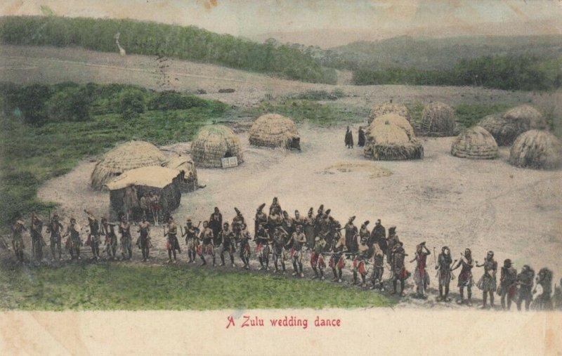 SOUTH AFRICA, 1906; A Zulu wedding dance