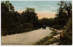 1901-07 Scranton PA Elmhurst Boulevard Carriage Lackawanna RARE Old UDB Postcard
