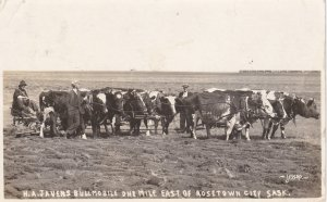 RP: ROSETOWN CITY , Saskatchewan , Canada , PU-1919 ; Bullmobile Plowing Field