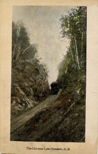 NH - Lake Sunapee Region. The Cut , Railroad Scene.  *DPO- Blodgett Landing...