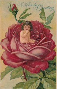 GREETING, 1900-10s; Toddler sitting in a big red rose
