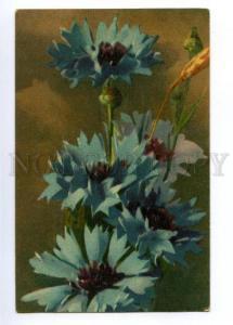 148550 Cornflowers By C. KLEIN vintage PC