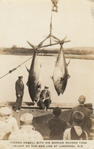 RP, LIVERPOOL , Nova Scotia, Canada , 1930s ; World Record Tuna caught by pole