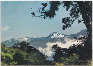 Pico Bolivar, The Bolivar peak, Los Andes, Venezuela, 1979 used Postcard