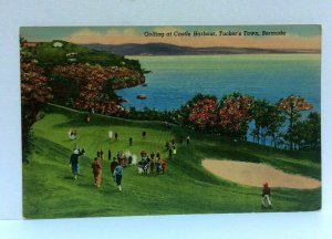 Tuckers Town Bermuda Castle Harbour Golf Linen Vintage Postcard