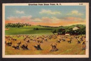 NY Greetings from STONY POINT NEW YORK Linen Postcard