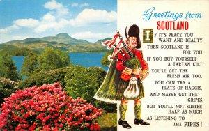 Postcard, 1982 Greetings from Scotland Bamforth S14 Scotty Series 8X