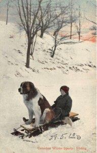 br105492 winter sports sliding canada dog saint bernard montreal